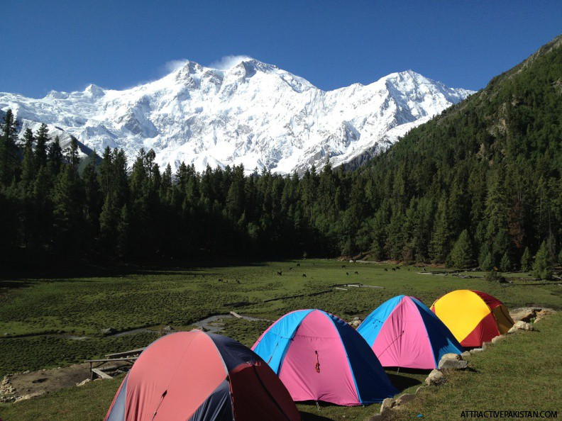 Fairy Meadows (June 2013)