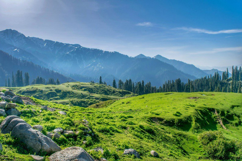 Gabina Jabba (May 2016)